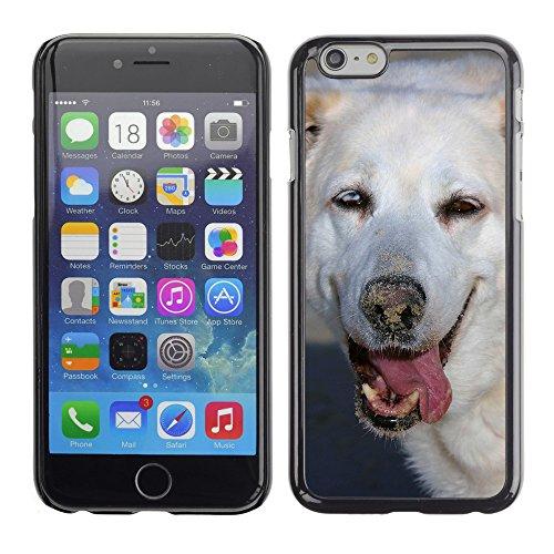 """Premio Sottile Slim Cassa Custodia Case Cover Shell // F00013724 chien // Apple iPhone 6 6S 6G 4.7"""""""