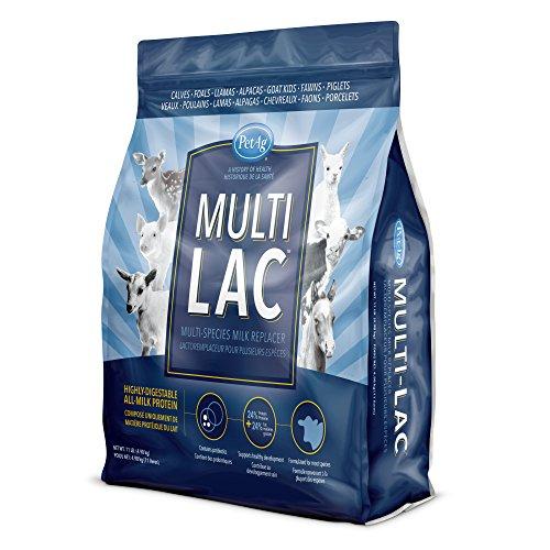 PetAg Multi-Lac Multi-Species Milk Replacer, 11 lb - Kid Milk Replacer