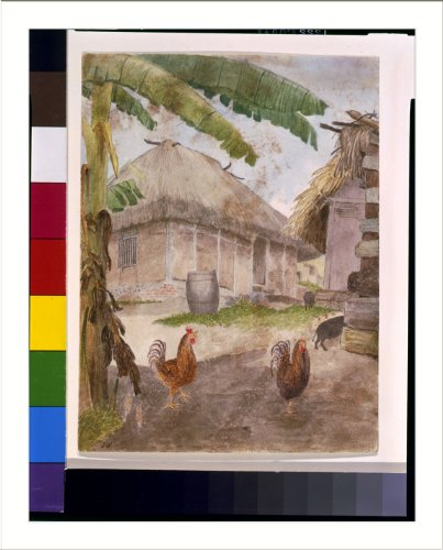 Historic Print (L): [Two chickens, two pigs, and huts, Jamaica]