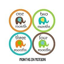 Months in Motion 097 Monthly Baby Stickers Gender Neutral Elephants Months 1-12 Milestone Sticker
