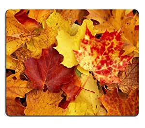 Autumn Fallen Colorful Leaves Scenery Mouse Pads Customized Made to Order Support Ready 9 7/8 Inch (250mm) X 7 7/8 Inch (200mm) X 1/16 Inch (2mm) High Quality Eco Friendly Cloth with Neoprene Rubber Luxlady Mouse Pad Desktop Mousepad Laptop Mousepads Comfortable Computer Mouse Mat Cute Gaming Mouse pad