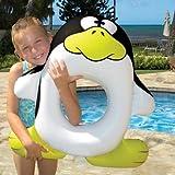 Penguin Pool Tube