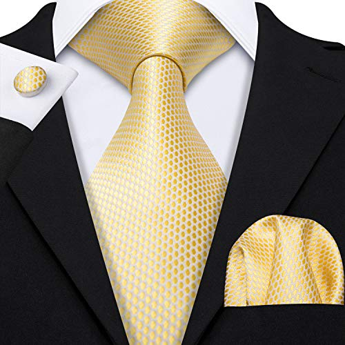 Barry.Wang Yellow Ties for Men Designer Party Tie Pocket Squares Silk