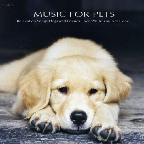 Music for Pets - Relaxation Songs Dogs and Friends Love While You Are Gone