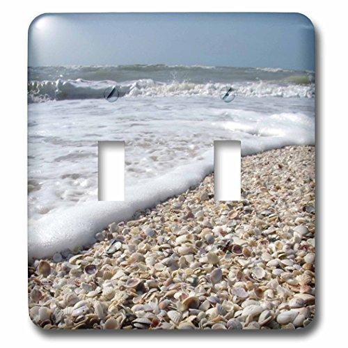 3dRose  lsp_89073_2 Seashells Sanibel Island Gulf Coast Florida Us10 Dfr0166 David R Frazier Double Toggle - Sanibel Outlet