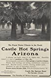 1907 Ad Castle Hot Springs Health Spa No Tuberculosis Cases Received AZ- Original Vintage Advertisement offers
