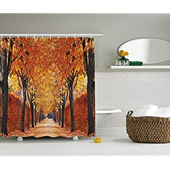 orange and brown shower curtain. Nature Shower Curtain by Ambesonne  Fall Road in Park Autumn Leaves Distance Perspective Foliage Forest Amazon com