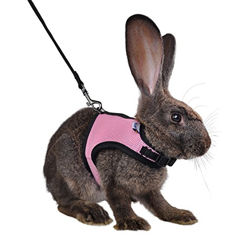 Niteangel Adjustable and Breathable Mesh Harness with Lead for Rabbit (S, Pink)