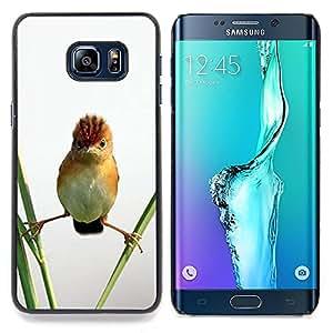 """Planetar ( Piloto Sunglasses ventana de coche del viento"""" ) Samsung Galaxy S6 Edge Plus / S6 Edge+ G928 Fundas Cover Cubre Hard Case Cover"""