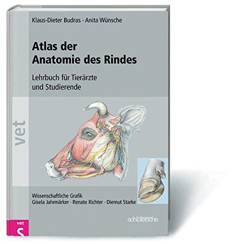 Klinische Anatomie des Rindes: Supplement zur klinisch-funktionellen ...
