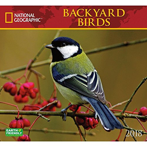 National Geographic Backyard Birds 2018 Wall Calendar