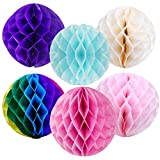 6 Pcs Honeycomb Tissue Paper Ball Decorations Tissue Pom Poms Decor for ...
