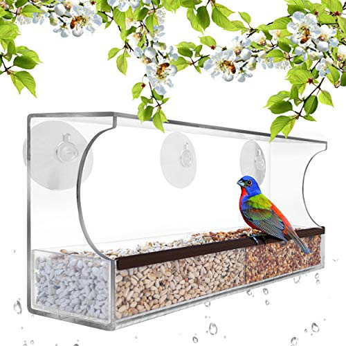 (Gray Bunny GB-6850 Deluxe Clear Window Bird Feeder, Large Wild Birdfeeder with Drain Holes, Removable Tray, Super Strong Suction Cups, Transparent Viewing, Covered, High Seed Capacity, Rubber Perch)