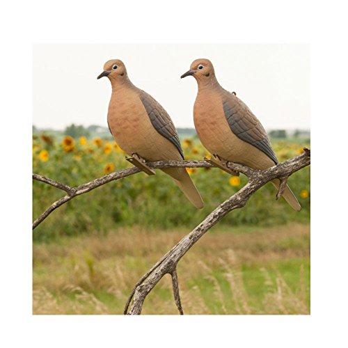 Avery Hunting Gear Mourning Doves (1/2 Dozen) ()