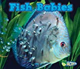 Fish Babies (Animal Babies)