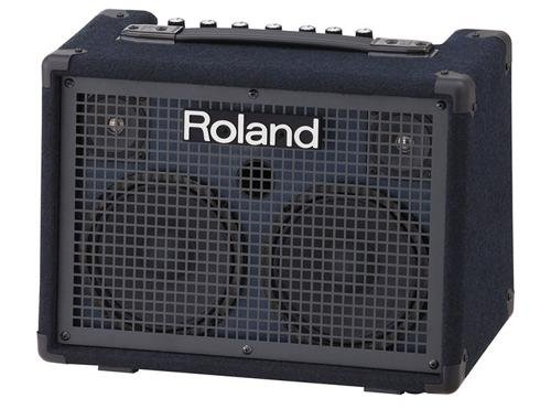 Roland Battery-Powered Stereo Keyboard Amplifier, 30 watt (15W + 15W) (KC-220) from Roland