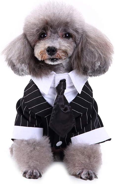Haodou. Traje de Esmoquin para Perro con Corbata para Perro, Color ...