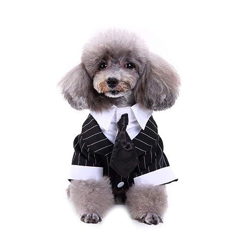 Wicemoon 1pcs Raya para Mascotas Traje de Esmoquin Corbata de Moño ...