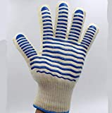 Wanson Heat Resistant Gloves BBQ Flame Retardant Gloves for Kitchen, Oven, Microwave Oven Retardant Anti-Skid Double-Sided Use 500 Degree 1 Pair