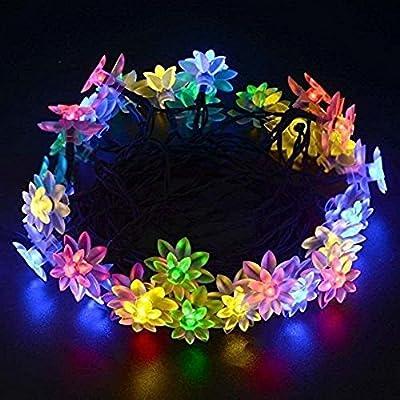 Lightess Solar String Lights Lotus Flower Fairy LED String Light for Christmas Garden Fence Path Landscape Decoration (30 LED Multi color)