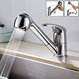 Kitchen Sink Faucet Modern Single Handle Pull Out Sprayer Kitchen Mixer Taps 10 Years Warranty Transitional with Chrome Brass Pull-out / Pull-down 360 Degree Rotatable Kitchen Faucet