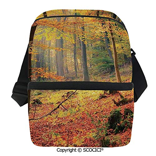 SCOCICI Insulated Lunch Cooler Bag Colorful Autumn Forest Sun Golden Leaves Trees Seasonal Scenics Pictur Reusable Lunch for Men Women Heat Insulation,Heat Protection