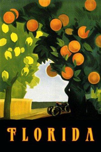 visit-florida-miami-farm-lemon-orange-juice-farm-fruits-travel-tourism-12-x-16-image-size-vintage-po