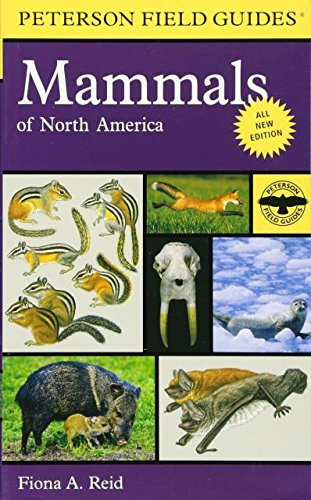 Peterson Field Guide to Mammals of North America: Fourth Edition (Peterson Field Guides) (Guide Petersons)