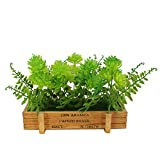 Greatflower 1 set Green Plastic Artificial Flowers Bushes with wooden box for Garden or Chirstmas Decoration