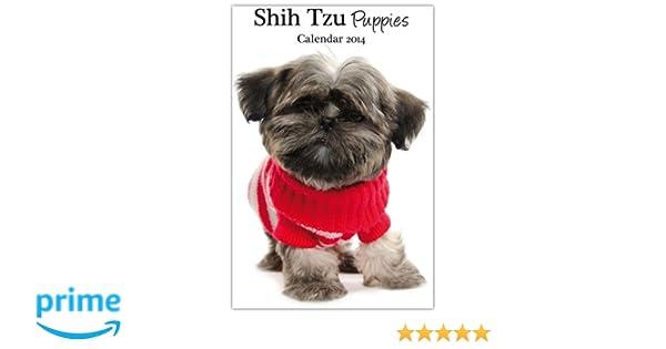 Shih Tzu Puppies 2014 Wall Calendar