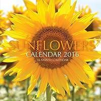 Sunflowers Calendar 2016: 16 Month Calendar