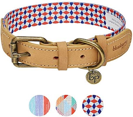 Blueberry Pet Lead with Soft /& Comfortable Handle Leads for Dogs Small 150 cm x 1.5cm 3M Reflective Multi-colored Stripe Dog Lead in Olive /& Blue-gray