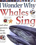 I Wonder Why Whales Sing: and Other Questions About Sea Life
