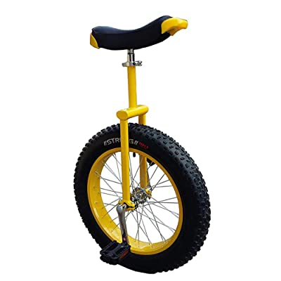 "YYAO 20"" Wheel Unicycle Mountain Fat Tire (20"" X 4"") with Alloy Rim,Yellow,20inch: Home & Kitchen"