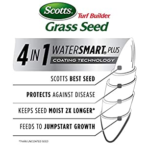 Scotts Turf Builder Grass Seed - Southern Gold Mix for Tall Fescue Lawns, 40-Pound (Sold in select Southern states)