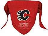 Hunter Mfg. LLP NHL Calgary Flames Pet Bandana, Team Color, Small