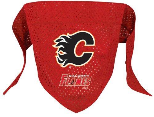 Hunter Mfg. LLP NHL Calgary Flames Pet Bandana, Team Color, Small