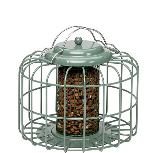 Nuttery NT055 Peanut Sunflower Feeder product image