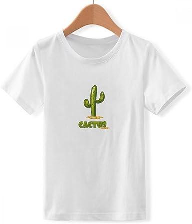 DIYthinker Suculentas Cactus en Maceta Planta de Cuello ...