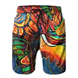 Mens/Men's Colorful Africa Elephant Summer Beach Shorts Casual Pants Printing Quick Dry Beach Shorts Swim Trunk