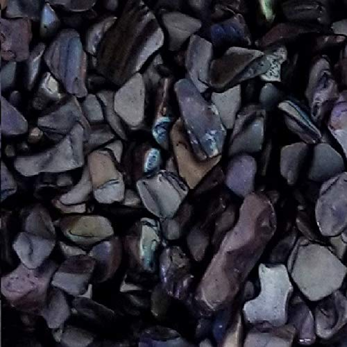 BeachWalk Small Natural Crushed Shells - for Weddings, Vase Filler, Home Décor, and Crafts (32 oz (2 lb), Black Pearl)
