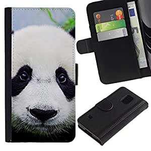 iKiki Tech / Cartera Funda Carcasa - Panda Cute Japanese Eyes Sad Furry Plush - Samsung Galaxy S5 V SM-G900