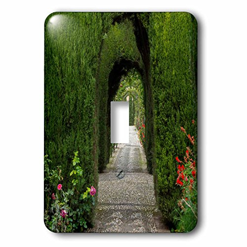 Danita Delimont - Gardens - Granada, Spain, Alhambra, hedges and green arches and plants - Light Switch Covers - single toggle switch (lsp_227917_1) by 3dRose