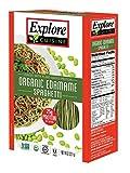Explore Cuisine Organic Edamame Spaghetti (Pack of 6)
