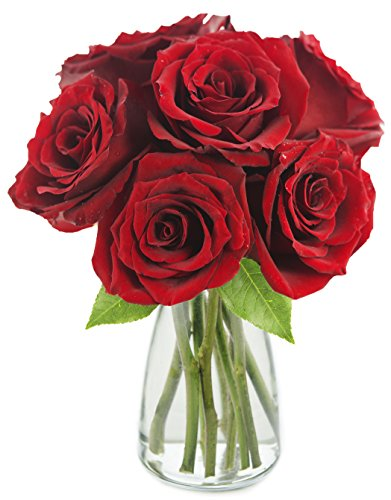 KaBloom The Romantic Classic Red Rose Bouquet of 6 Fresh Cut Red Roses (Farm-Fresh, Long-Stem) with Vase