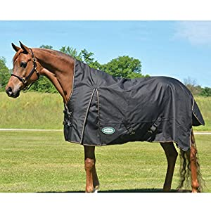 1200D Paladin High Neck Heavyweight Turnout Horse Blanket by Country Pride
