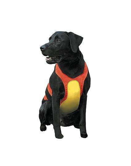 5eab689d1339e Amazon.com : Remington Orange Large Chest Protector for Dogs : Dog ...