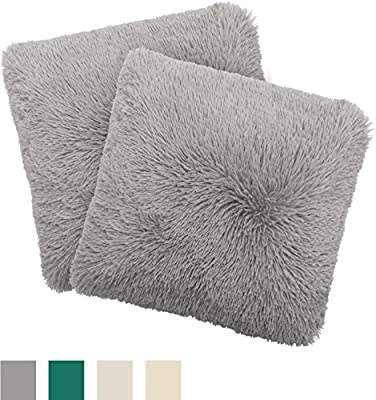 Alexus 2-Piece Shag Decorative Pillow Set