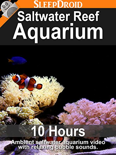 Saltwater Reef Aquarium - 10 hours of Ambient Saltwater Aquarium Video with Relaxing Bubble Sounds