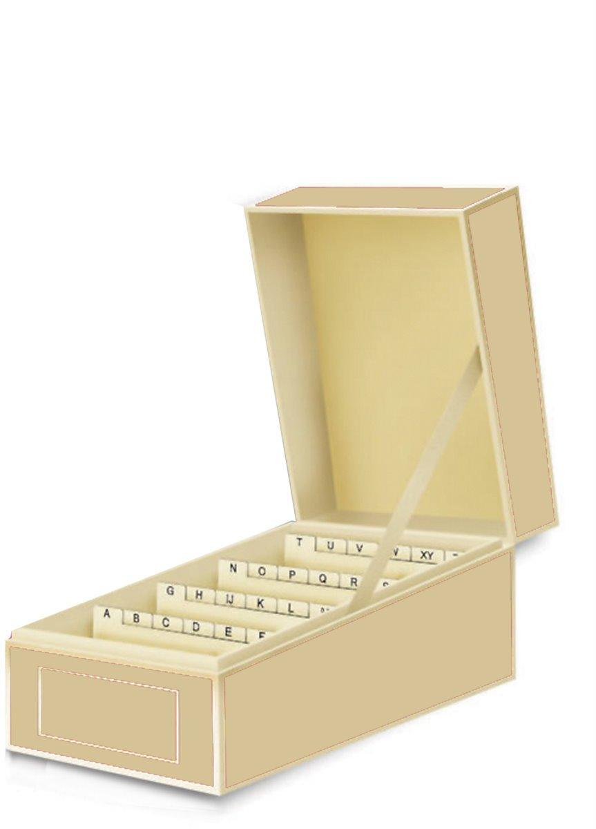 Box per biglietti da visita bianco ghiaccio +++ per LA RACCOLTA DI BIGLIETTI DA VISITA +++ qualità originale Semikolon LEUCHTTURM1917 3230017